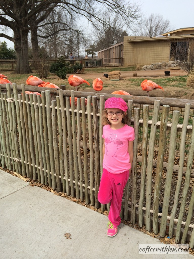 She had to wear her flamingo shirt because she knew she would be seeing her favorite bird!